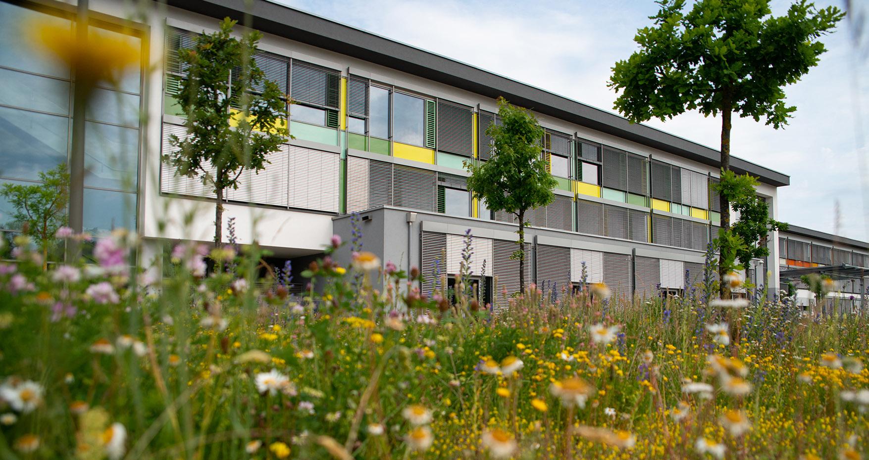 Lycée Ermesinde Photo: LEM